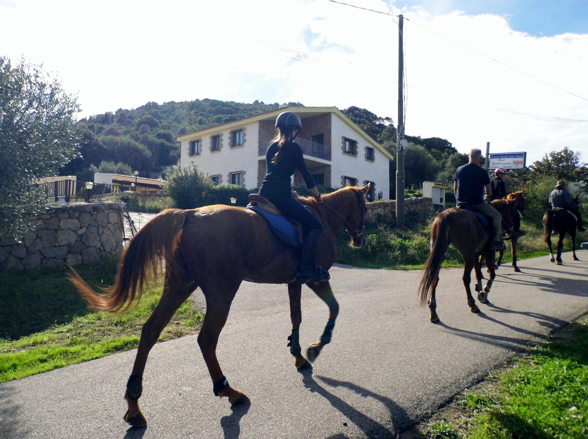 Equitazione in Gallura